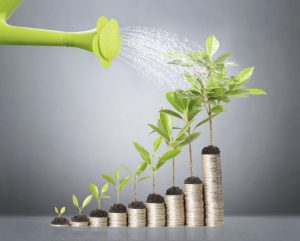 Nitya LLC Accounting and Tax Services for your Growing Business